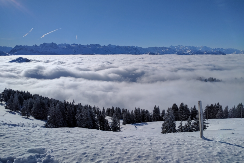The cloud tops at Rigi Kulm presenting Tomviz to an international audience